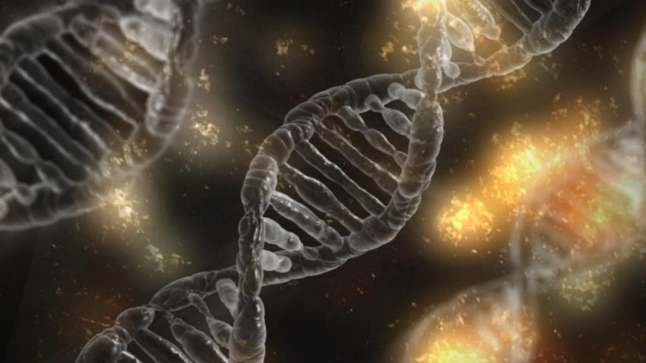 Kwasy nukleinowe-budowa i rola w komórce