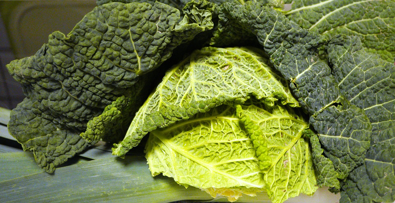 Kapusta czyli warzywo idealne do odchudzania